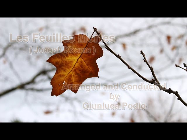 LE FEUILLES MORTES (Kosma-Prevert) Arranged and Conducted by Gianluca Podio