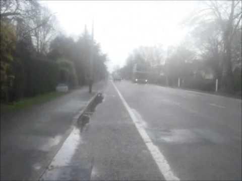 Huntingdon Road (South)