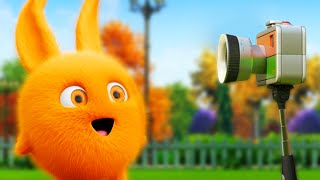 Cartoon | Sunny Bunnies | SELFIE 📷 | Funny Cartoons for Children