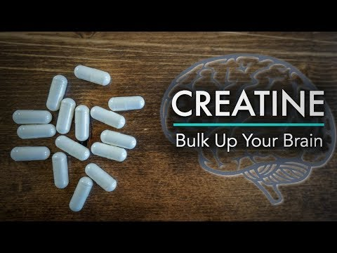 Creatine: Bulk Up Your Brain Power