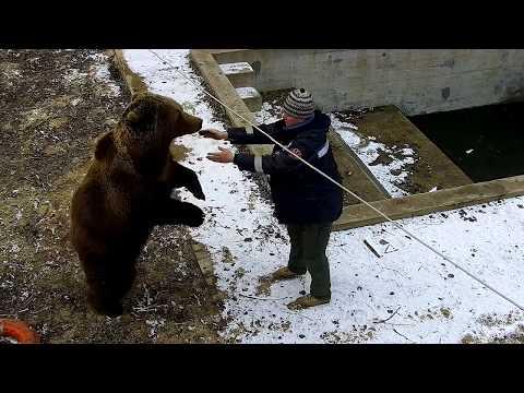 Бороться не будем,а будем чесаться 😃/Bear Mansur