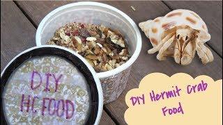 DIY Dry Hermit Crab Food!