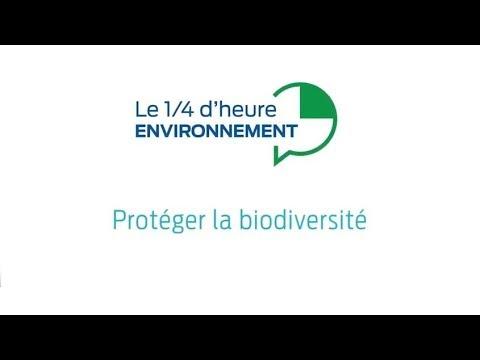 Protéger la biodiversité sur les chantiers : on en parle ?