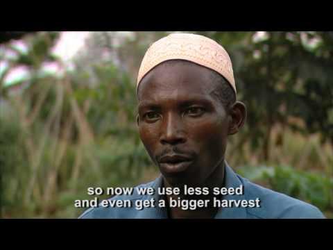Rwanda: 15 years on - Land and Security