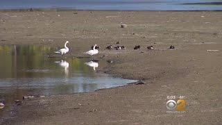 Drought Concerns On The Rise
