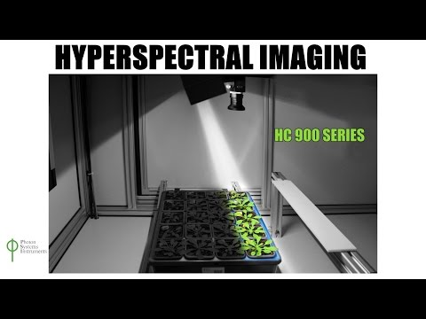 Hyperspectral Imaging for Plant Science
