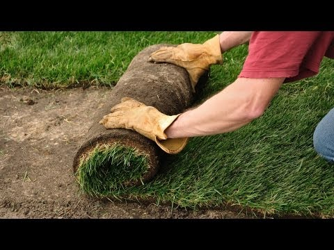 How to Plant a Lawn from Sod | Lawn & Garden Care