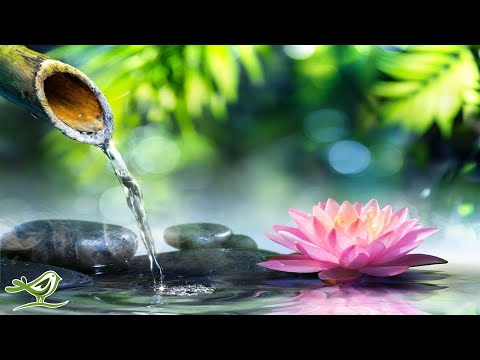 Relaxing Piano Music: Relaxing Music, Sleep Music, Meditation Music, Spa Music ★109