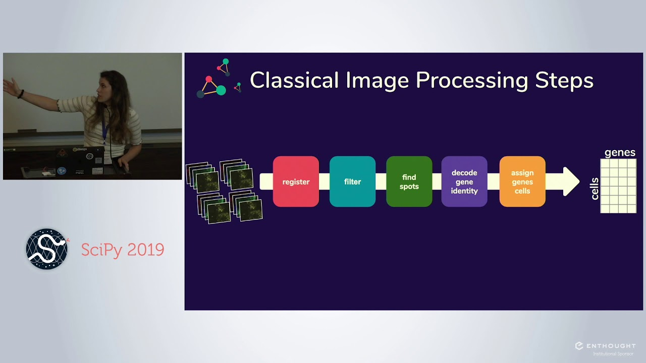 Image from Starfish: Standardizing Pipelines for Image Based Transcriptomics