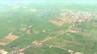 Aonla, Bareilly as seen from the air