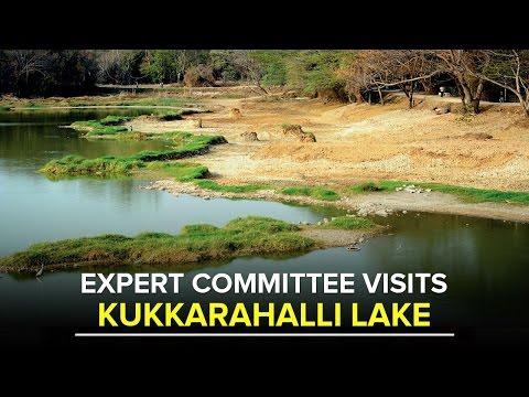 KUKKARAHALLI LAKE DEVELOPMENT: Experts visit Lake, seek public opinion - Star of Mysore