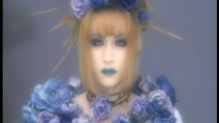 Hello, here is a clip collection of Mana-Sama, from the band Malice...