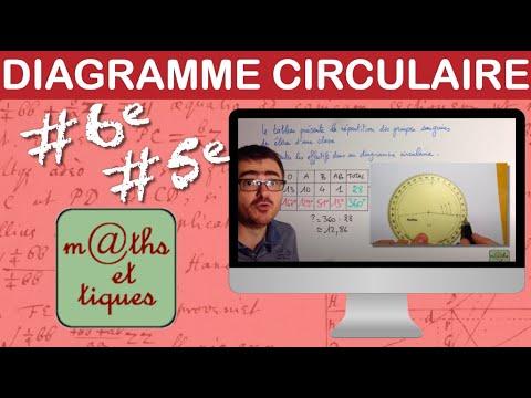 Construire un diagramme circulaire - Cinquième