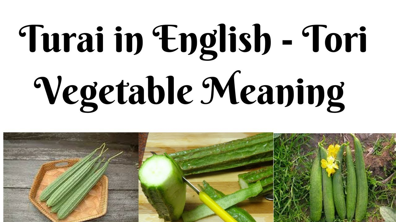 Turai in English - Tori Vegetable Meaning and other Hard Vegetable Names