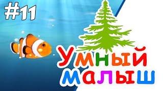Умный малыш #11. Развивающий мультфильм для малышей / Smart baby #11. Наше_всё!