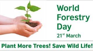 World forest day | विश्व वानिकी दिवस | 21 March
