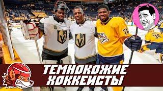Лучшие темнокожие хоккеисты в истории НХЛ