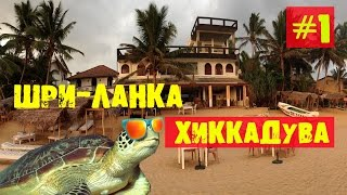 ШРИ ЛАНКА #1 Хиккадува(Делюсь впечатлениями от поездки на Шри Ланку. Будет несколько видео, посвященных путешествию по острову...., 2015-08-02T11:17:01.000Z)