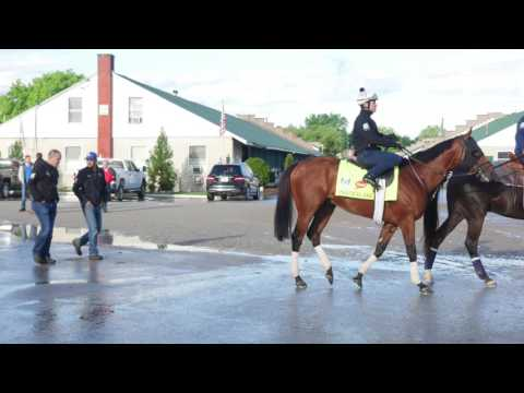 Kentucky Derby 2017: Practical Joke - Chad Brown