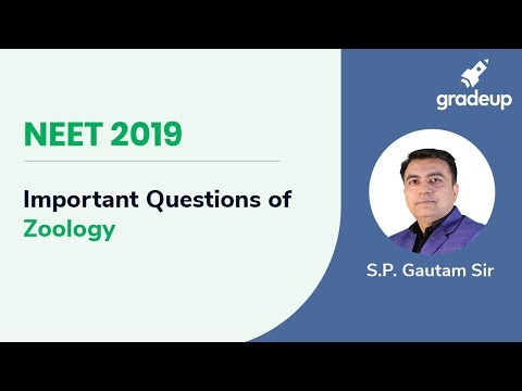 NEET 2019: Important Questions of Zoology