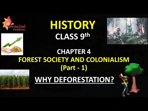 Forest Society and Colonialism Class 9 History Chapter 4 (Part 1) Deforestation in Hindi