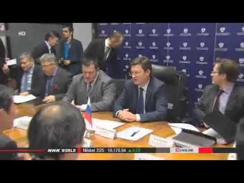 Japan, Russia discuss energy and investment