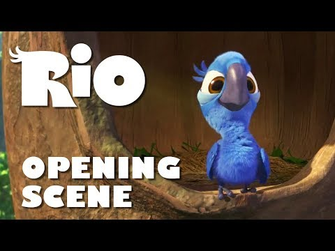 Opening Scene Song Real in Rio  RIO 1080p