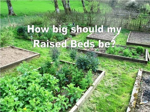 How Big should my Raised Beds be Raised bed Gardening Tips YouTube