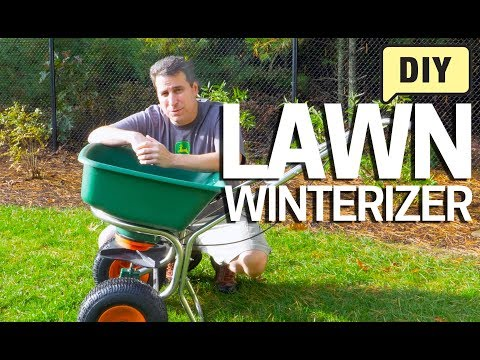 How to Winterize the Lawn – Get the Grass Ready for Spring