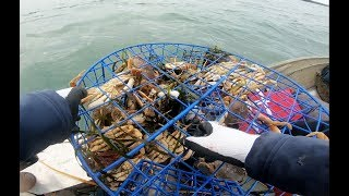 How to catch and clean crab - How to setup a crab trap