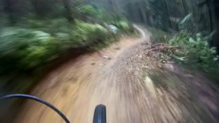Coed Y Brenin DRAGONS BACK - Uncle Fester Section - 22-01-2016 | Rob Mogs