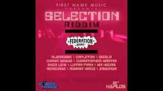 SELECTION RIDDIM MIX BY FEDERATION SOUND - FIRST NAME MUSIC - 21ST HAPIOS DIGITAL