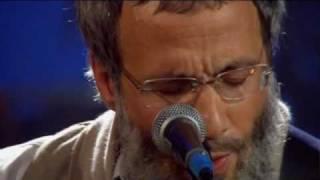Yusuf - Heaven, Where True Love Goes (Live Yusuf's Cafe Session 2007) + Lyrics