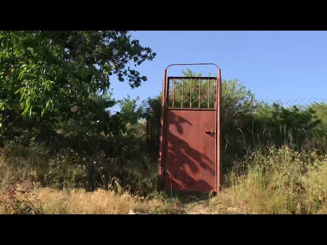 п. Мраморное.Продажа ТОП земельного участка с гаражом и сауной. Растёт 10 видов винограда и малина.
