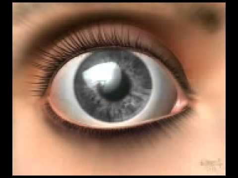 luz divina-in your eyes
