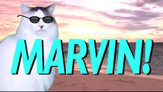 HAPPY BIRTHDAY MARVIN! - EPIC CAT Happy Birthday Song