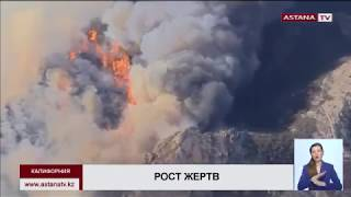 От пожаров  в Калифорнии  погибли уже  48 человек