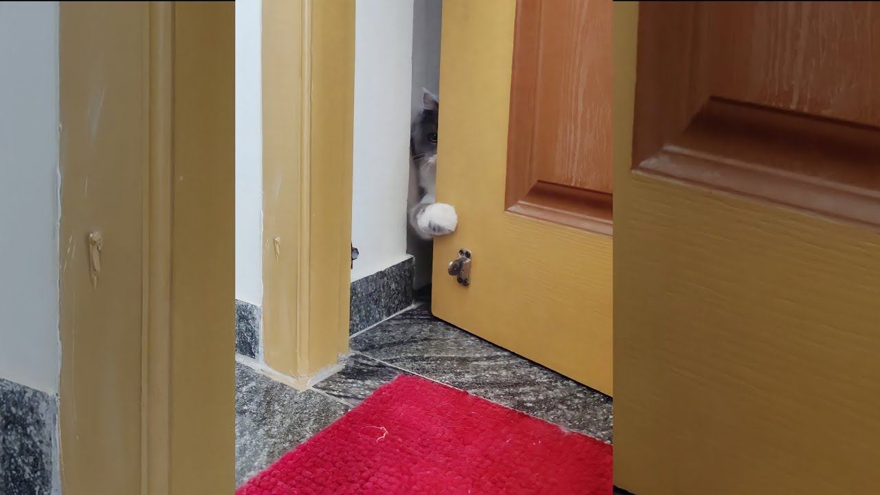 NIKKI OPENING DOOR ALONE..😍