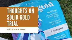 My Thoughts On Solid Gold Dog Food & Bridge Walk