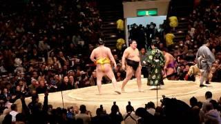 大相撲トーナメント大会 平成24年2月5日両国国技館.