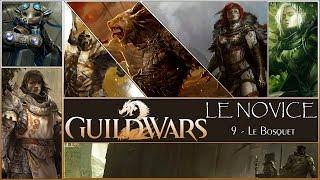 ★LE NOVICE #03★ Guild Wars 2 ::09:: Le Bosquet [FR][Gameplay] [Archives]