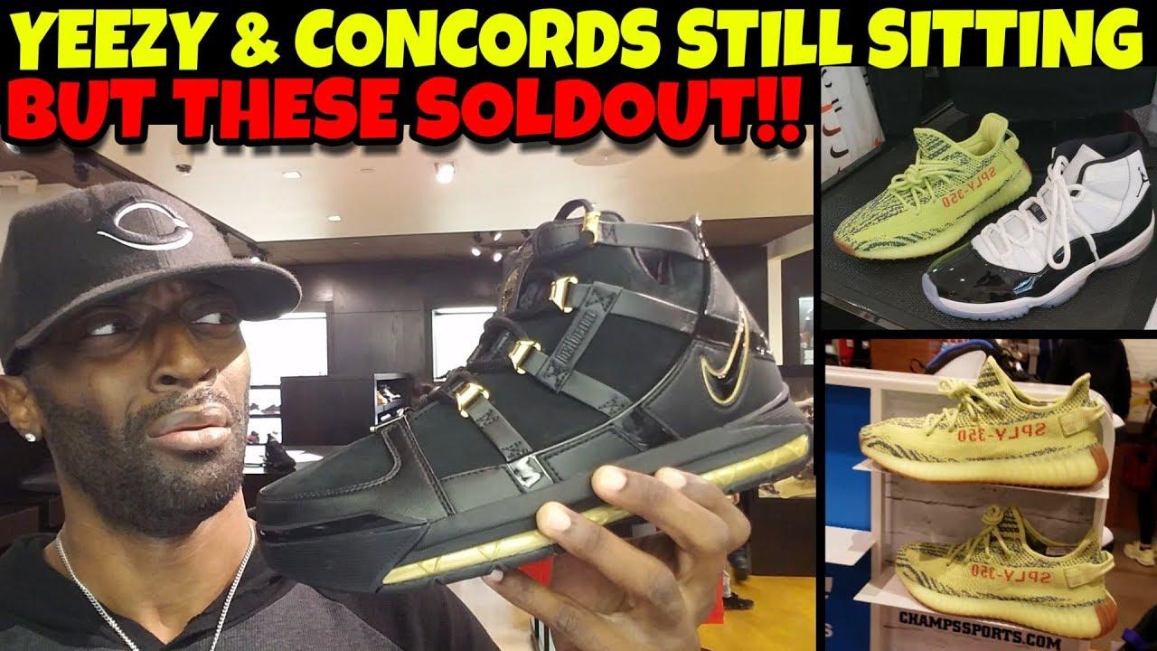 577d24f2b LeBron 3 Metallic Gold Soldout But Concords   Yeezy Still Sitting Like  DUCKS!