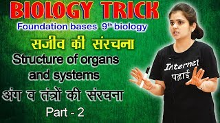 Structure of organ and system | Ground tissue system | Vascular tissue system  | Internet Padhai