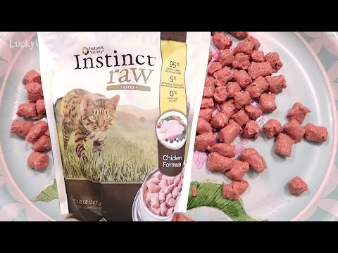 Nature's Variety Instinct Raw Frozen Cat Food Product Review And How To Feed