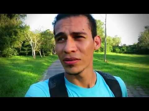 Perdido entre animales   Sapucaia Day Trip   Mi Vida en Porto Alegre