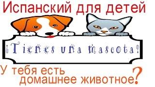 Испанский язык для детей.Домашние животные на испанском. У тебя есть домашний питомец?