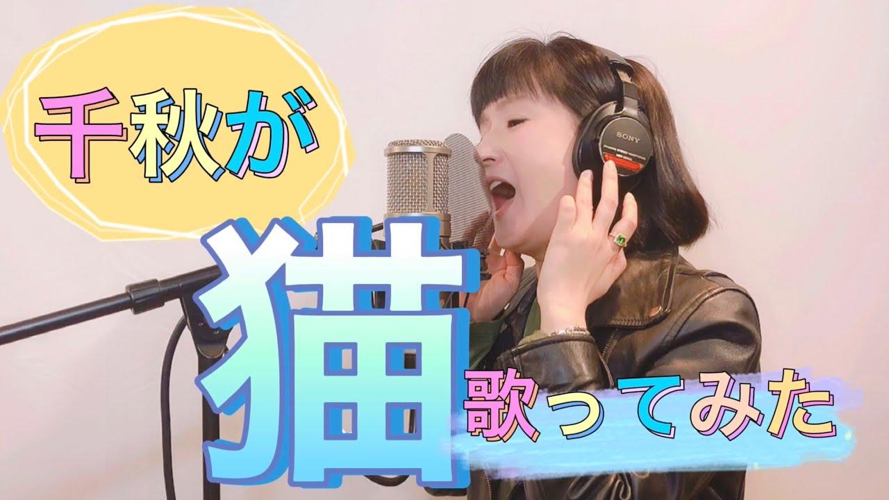 千秋がDISH//の「猫」を歌ってみた #猫 #歌ってみた