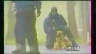 polizeihund training