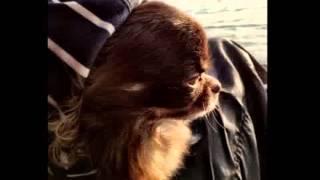 Video boy kittung download MP3, 3GP, MP4, WEBM, AVI, FLV Agustus 2018