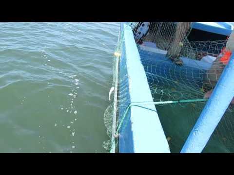 Net set in Lake Nicaragua, October 2013, Nicaragua Grand Interoceanic Canal